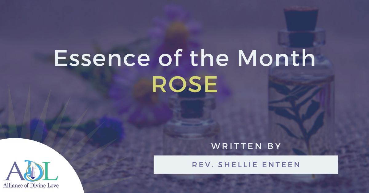 ADL Blog-Essence of the Month_Rose-2021_02