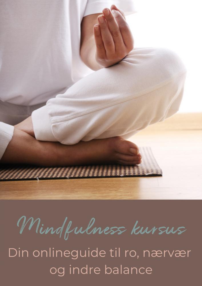 Online Mindfulnesskursus