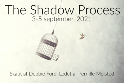 The Shadow Process Retreat (september 2021)