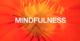 FLORAs MINDFULNESS