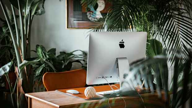desktop-in-the-jungle-edited
