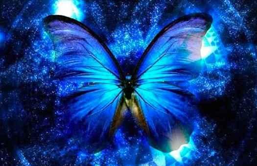 cosmic-butterfly