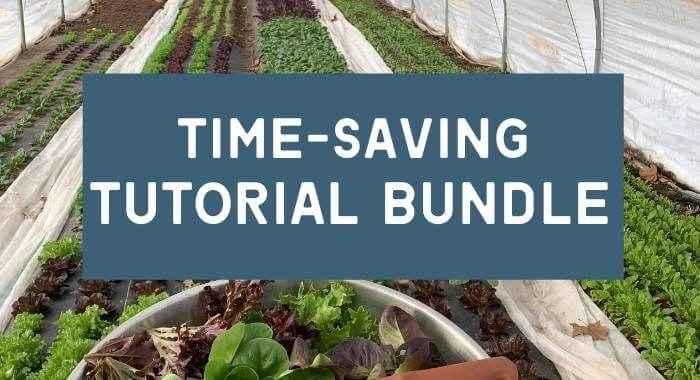 Time-Saving Tutorial Bundle Deal!