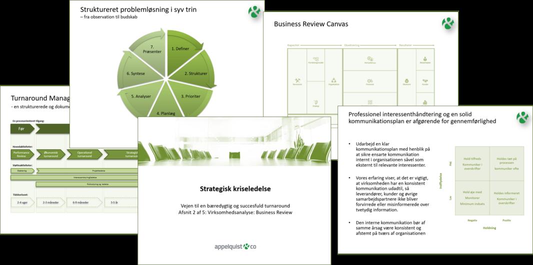 Appelquist & Co_Vejen til en bæredygtig og succesfuld turnaround 2-5_marts_2021
