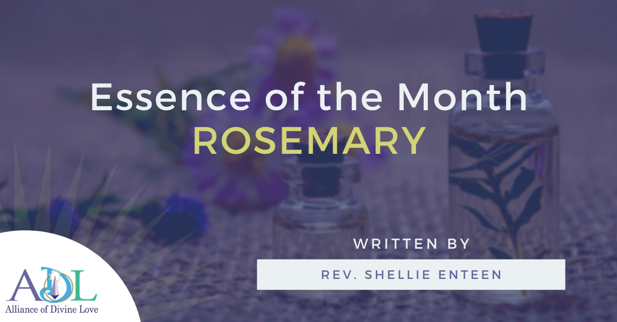 adl blog_essence of the month_2021_03_header image_rosemary
