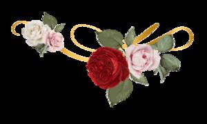 Dr-Magaly-Small-Logo-e1591851121707