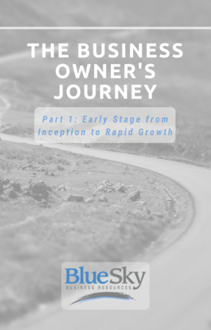 The Business Owner's Journey Ebook