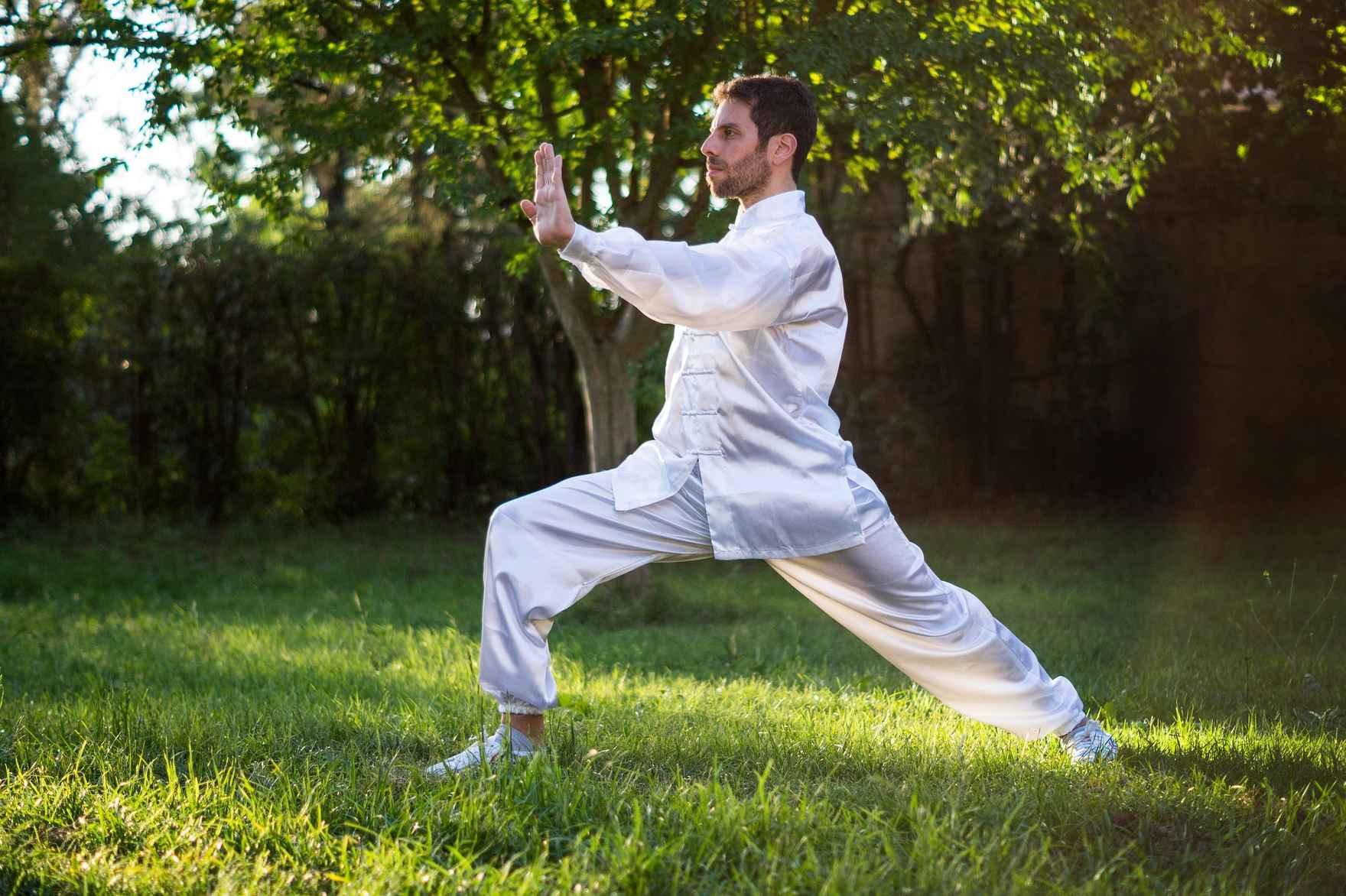 qi gong tai qi chi nature man energy health