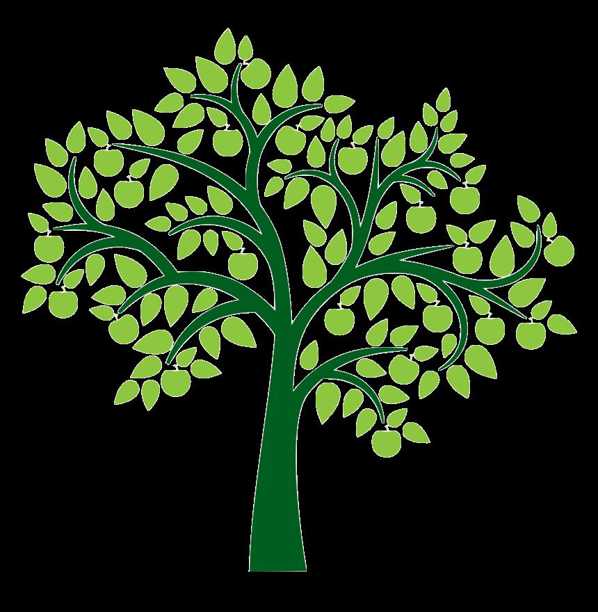 161-1617349_tree-clip-art-printable-tree-for-family-tree