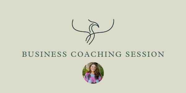 Business Coaching Session