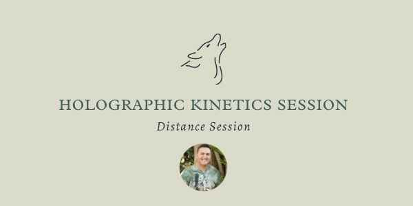 Holographic Kinetics Long Distance Surrogate Session