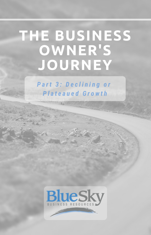 Part 3 The Business Owner's Journey Ebook