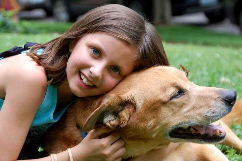 Webinar - Hvordan få en hverdagslydig hund?