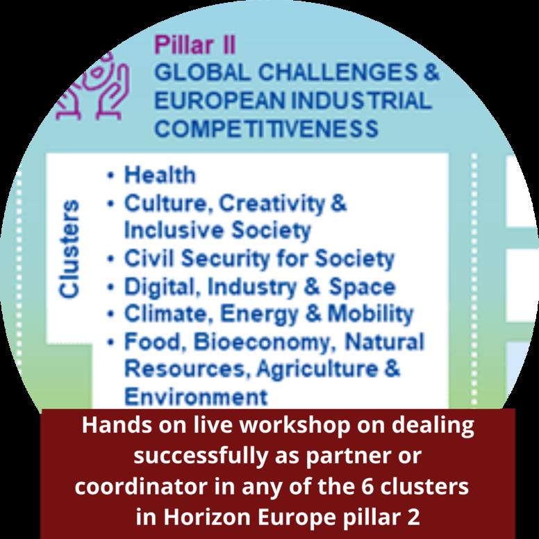 Horizon Europe pillar 2 clusters Workshop