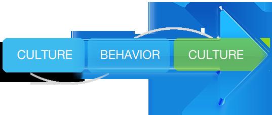 culture_behavior_culture