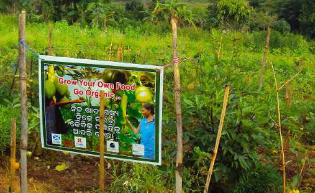 grow-organic