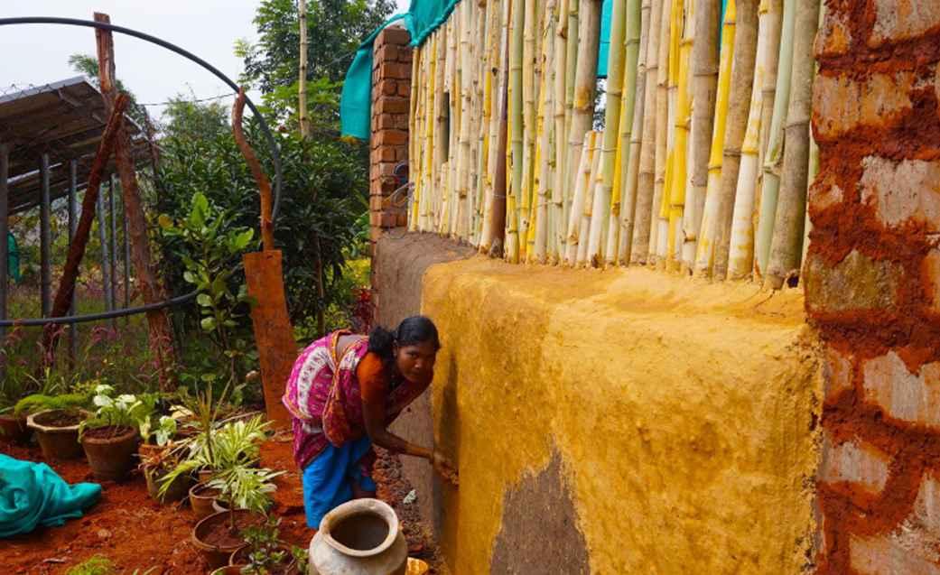 india-grow-food-campaign