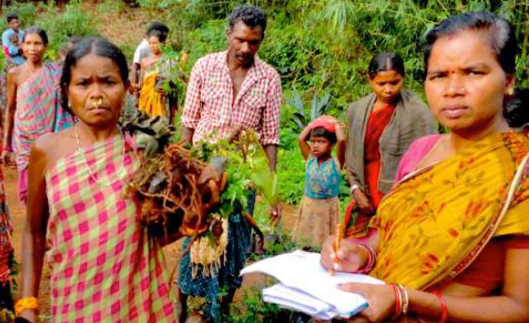 india-produce