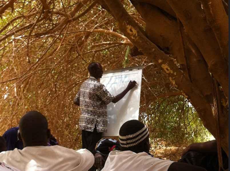 Agroforestry-Training2