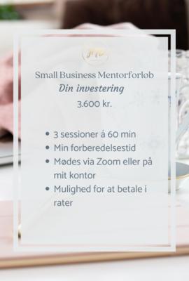 Small Business Mentorforløb