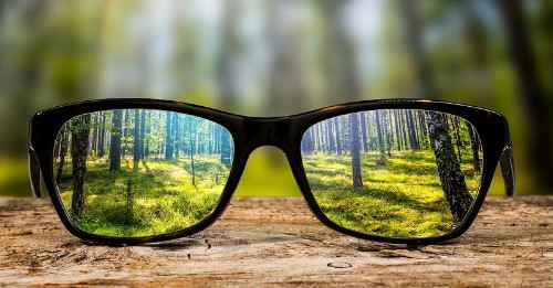 BL00 - How Do You See Your World A Glimpse into Mindful Awareness-High-Quality