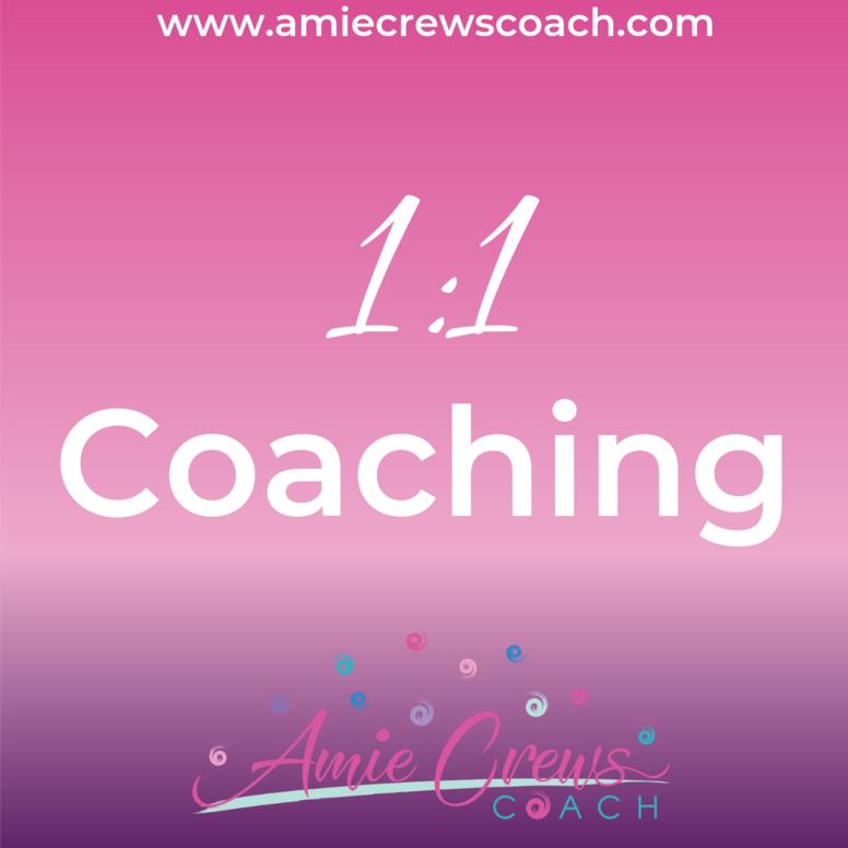 1:1 Coaching Experience