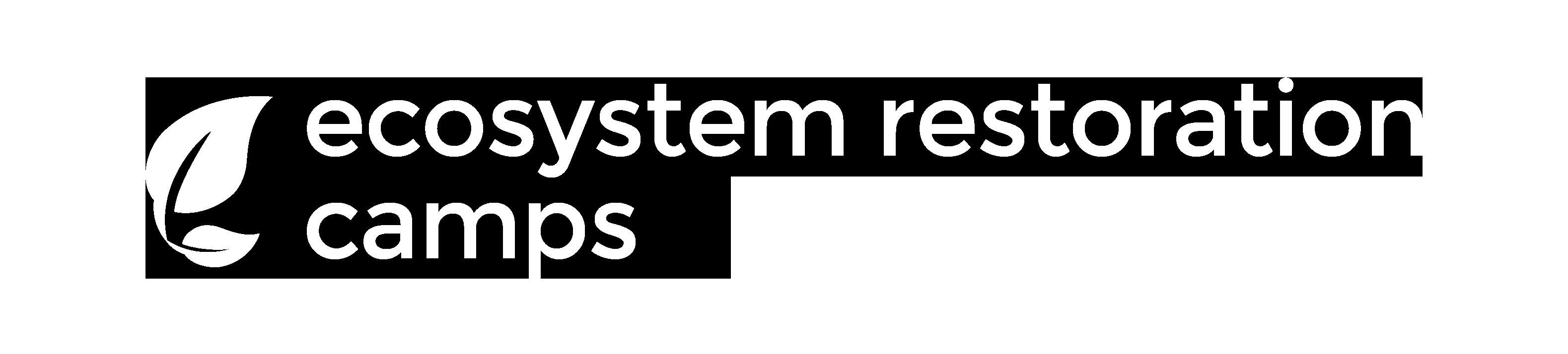ERC_Logo_White_transp