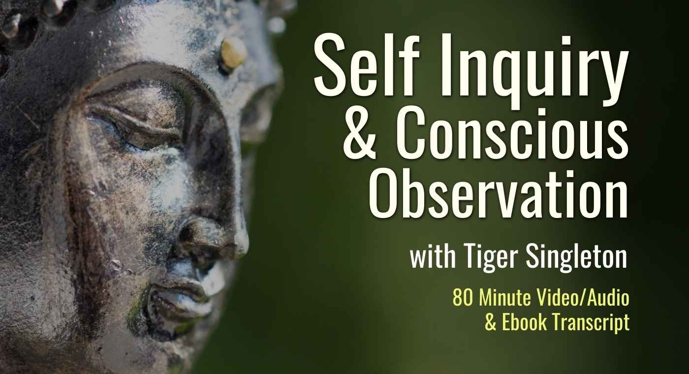 Self Inquiry & Conscious Observation