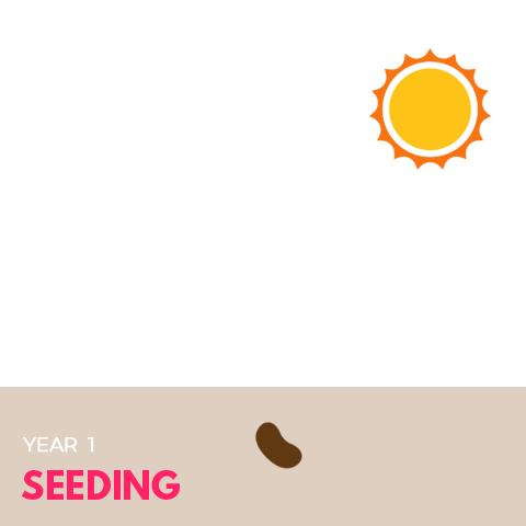 9-year-cycle-chart-year1-sq