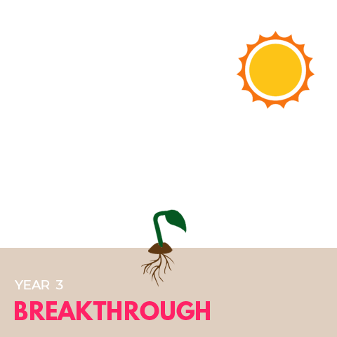9-year-cycle-chart-year3-sq