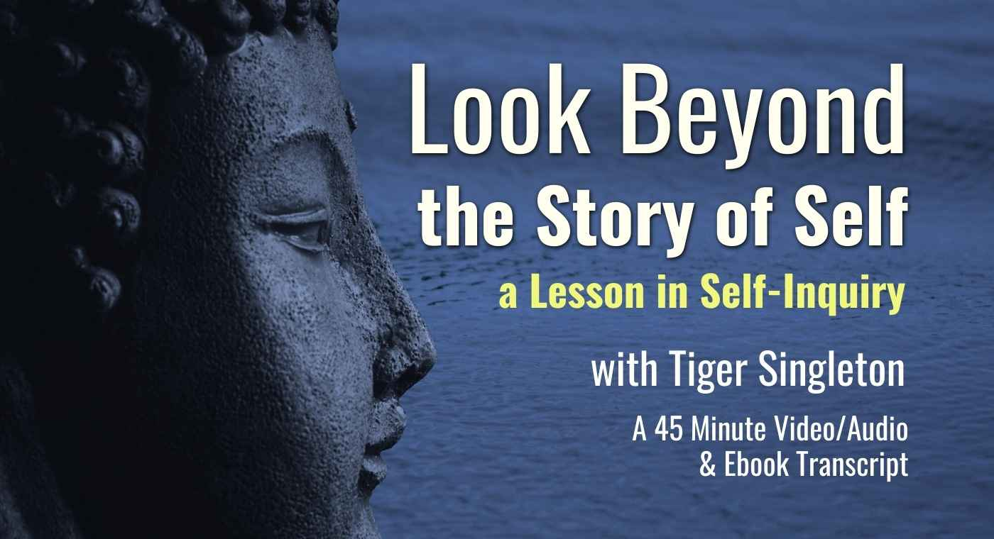 Self Inquiry - Look Beyond the Story of Self