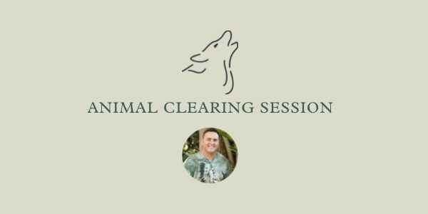 Animal Clearing Session