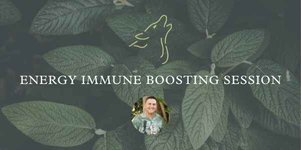 Product Image_Energy Immune Sessions