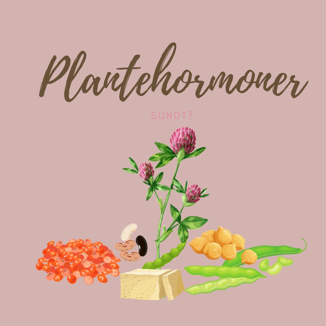 plantehormoner