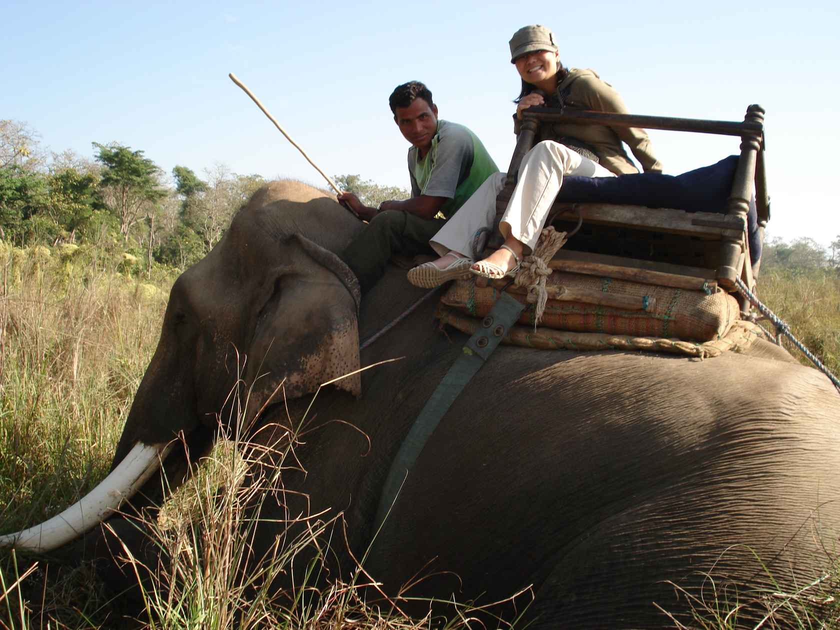 DSC01405_best-elephant