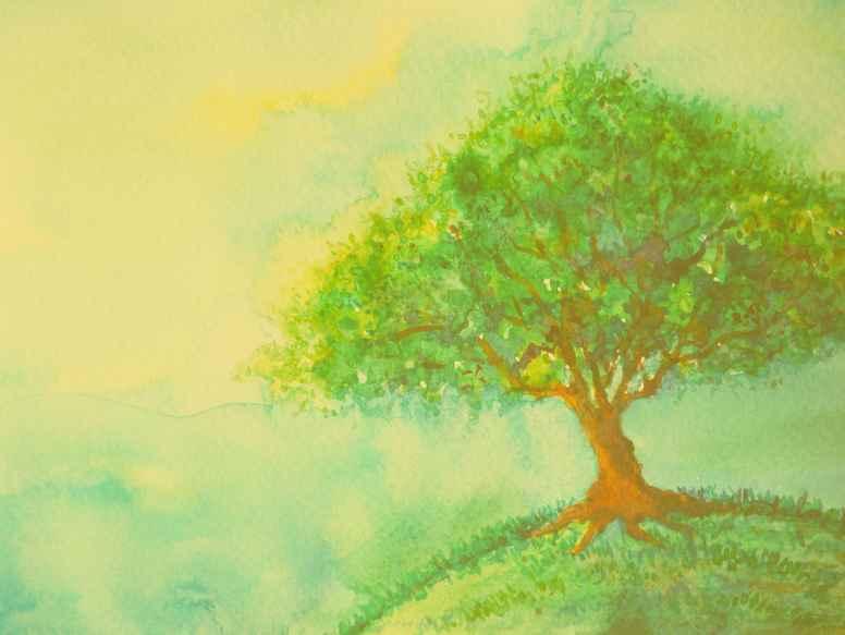 Tankemylder og tanker, der forstyrrer (Lydbog mindfulness)