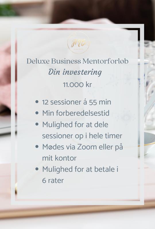 Deluxe Business Mentorforløb
