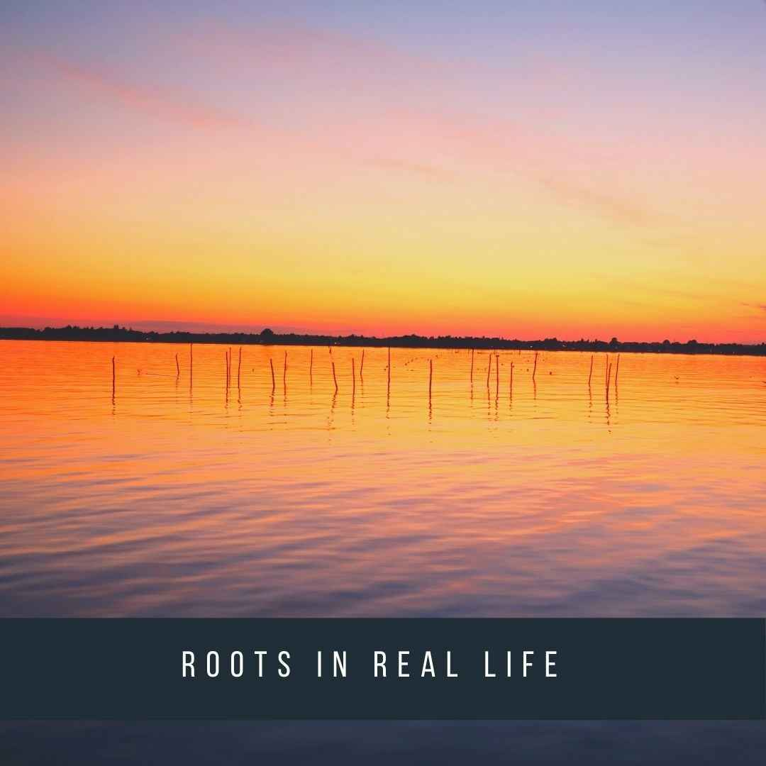 roots-in-real-life