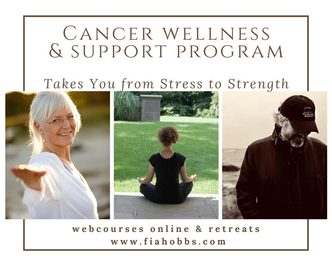 Cancer Wellness Support Program